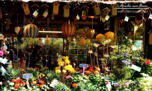 Le marché aux fleurs de la Reine Elisabeth à Paris